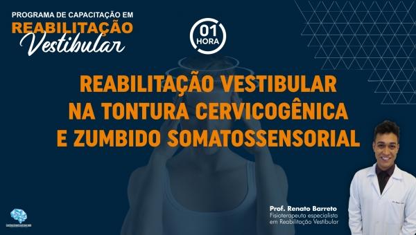 Reabilitação Vestibular na Tontura Cervicogênica e Zumbido Somatossensorial