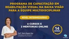 Intermediário - Programa de Capacitação em Reabilitação Visual na Baixa Visão para a Equipe Multidisciplinar